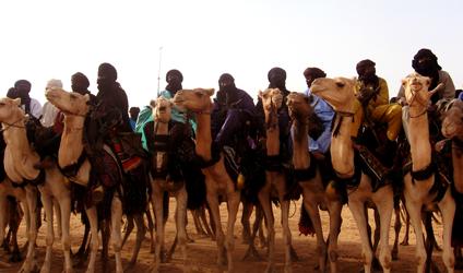 Photographie de Touaregs à dos de chameaux