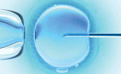 Image d'une cellule au microscope.