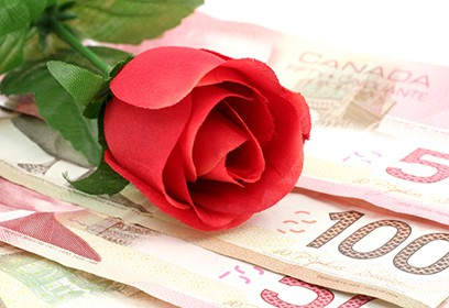 Photographie d'une rose déposée sur des billets d'argent