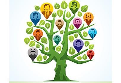 Illustration d'un arbre généalogique
