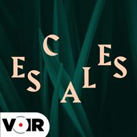 Visuel de Escales.
